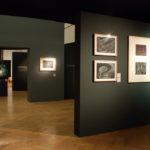 FT-vystava_2007-expozice-56